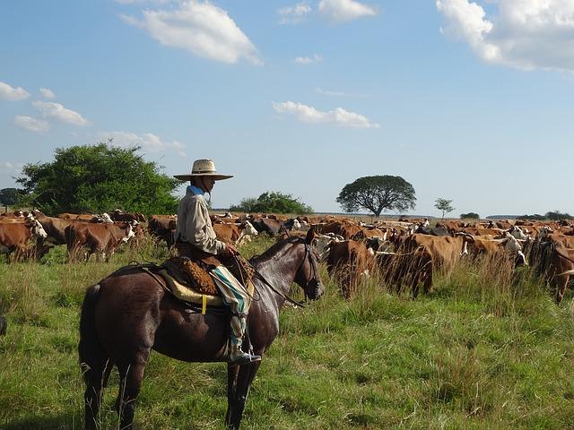 Charles Darwin los gauchos y el ritual del asado argentino