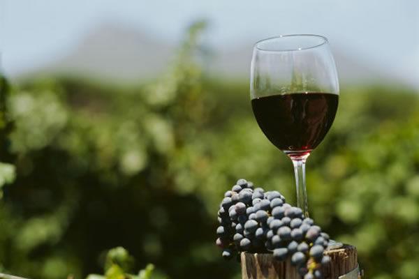 Los 5 mejores vinos argentinos para beber en tu barbacoa a domicilio
